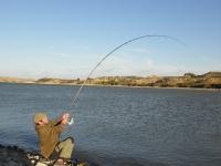 Neča na kaprech Ebro 1.11.010