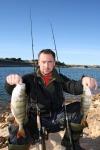 Ivoš na zimním lovu okounů ve Španělsku