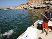 Marko velký talent ve vláčce září 09 Ebro