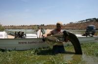 Ivo a jeho úlovek rio Ebro