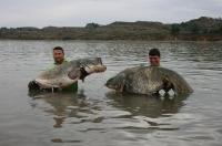 Roman s Robom a jejich říjnové úlovky. Ebro 010