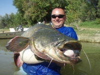 Michalův úlovek sumce 220cm 71kg
