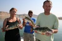 Okoun - Rybolov sumců na Ebru, průvodci, rybářské pobyty, rybaření