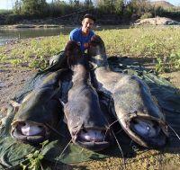 Honza Konečný - Rybolov sumců na Ebru, průvodci, rybářské pobyty, rybaření