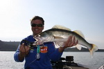 Pavel Straka - Rybolov sumců na Ebru, průvodci, rybářské pobyty, rybaření