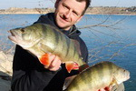 Michal Tichý - Rybolov sumců na Ebru, průvodci, rybářské pobyty, rybaření